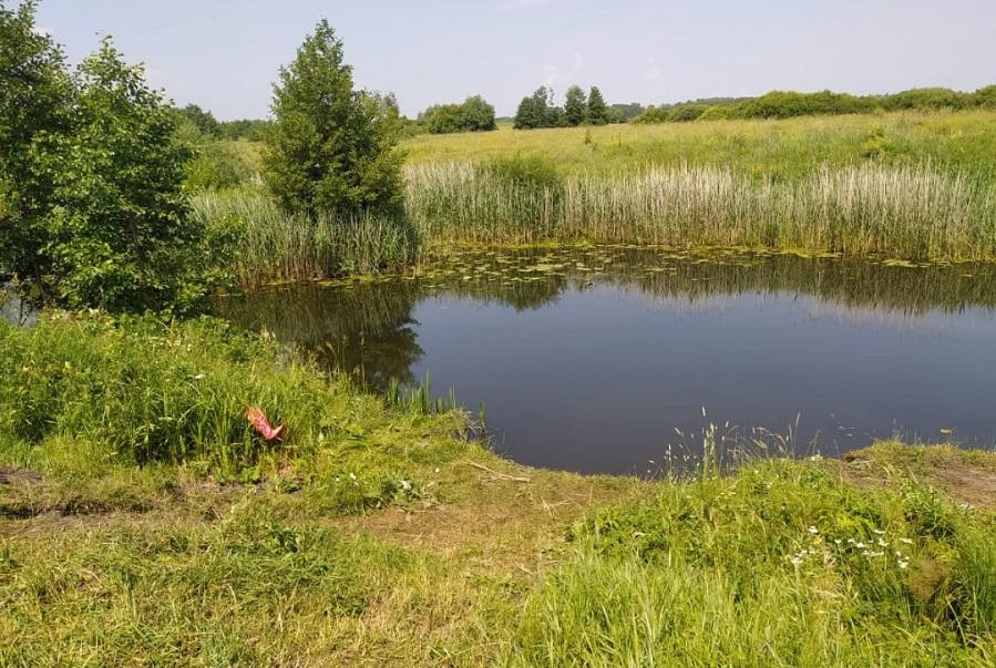 В Тамбовской области утонул 7-летний мальчик
