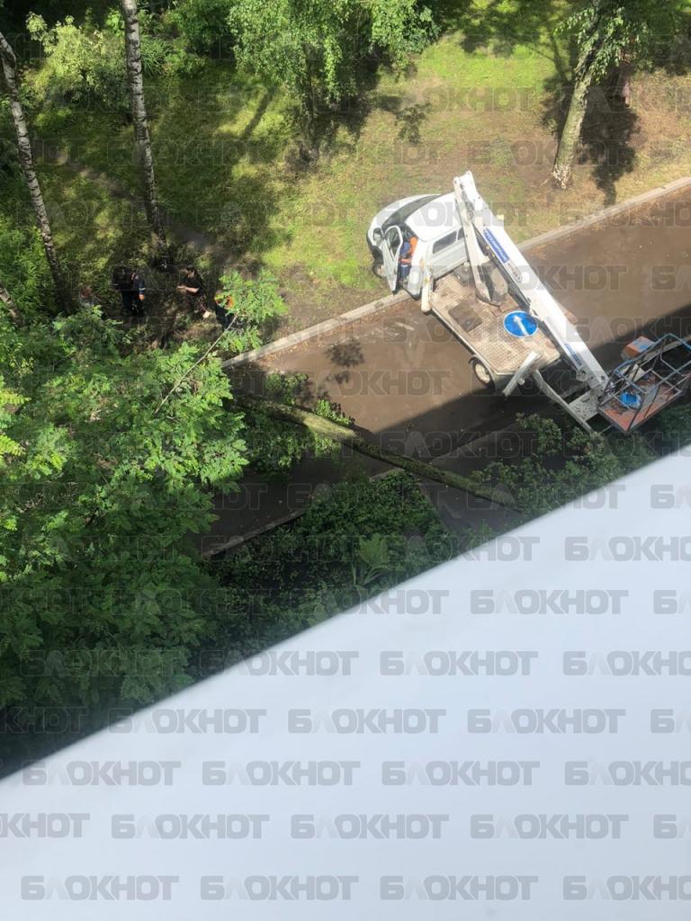 В центре Тамбова из-за непогоды дерево упало на дом