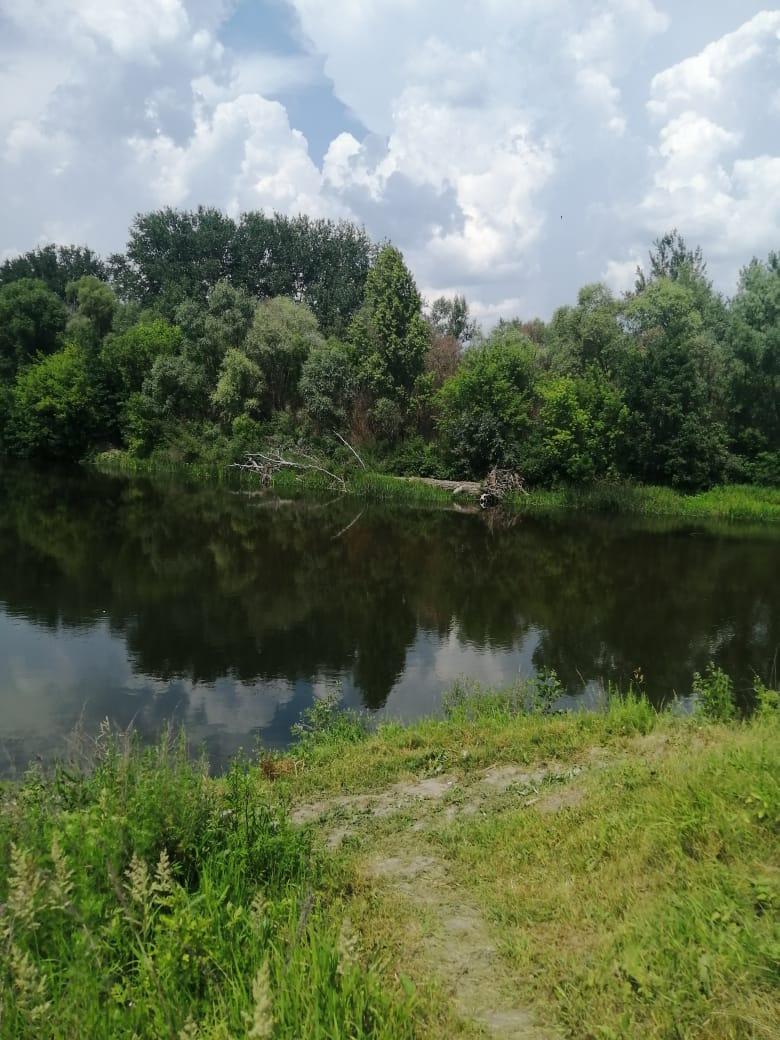 В Уваровском районе утонула 42-летняя женщина
