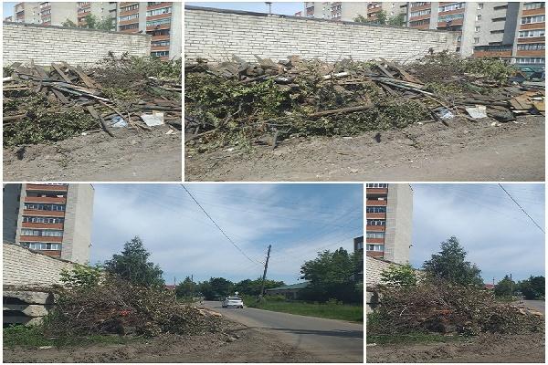 Жители Мичуринска жалуются на стихийные свалки