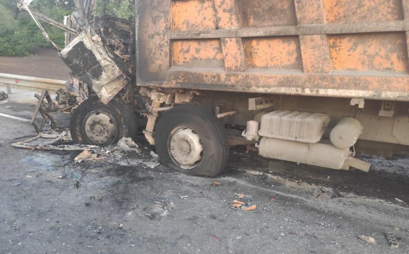 Под Тамбовом при столкновении большегрузов погиб водитель