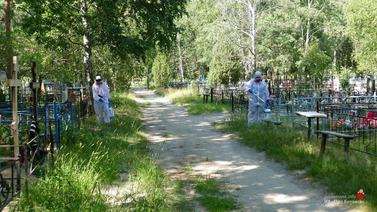 В Котовске вновь обработали от клещей общественные территории