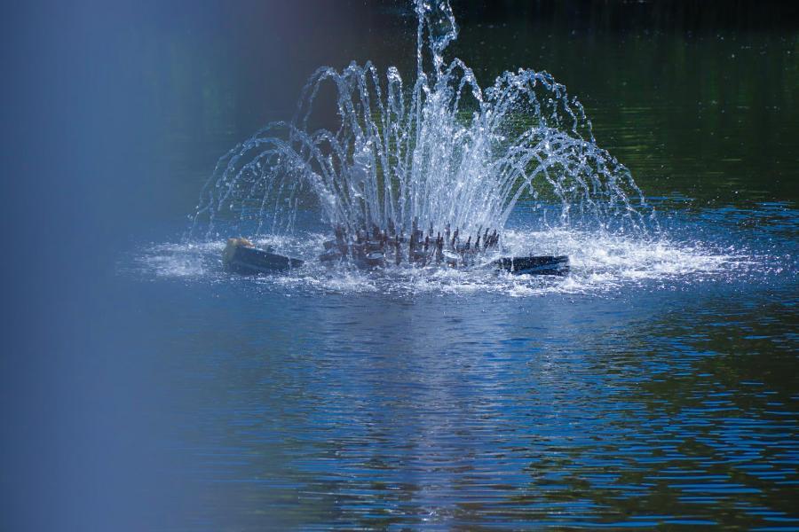 В Мичуринске отдыхающие на лодке сломали новый плавающий фонтан