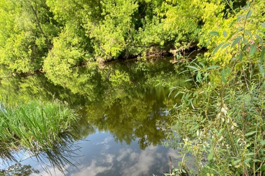 В реке в Жердевском районе утонул 36-летний мужчина