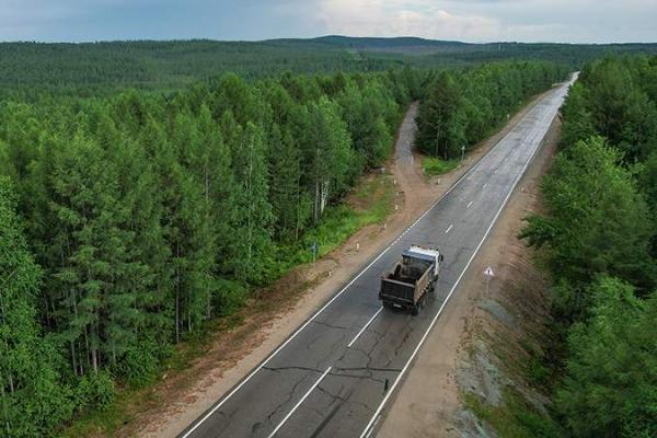 В Рослесхозе прокомментировали целесообразность приватизации отечественных лесов