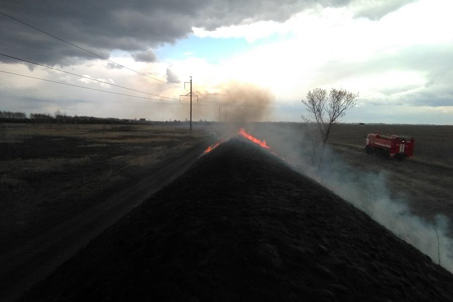 В Ржаксинском районе привлекут ответственных за горение травы