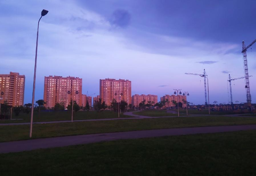 В Тамбове покосили траву на 600 объектах у жилых домов