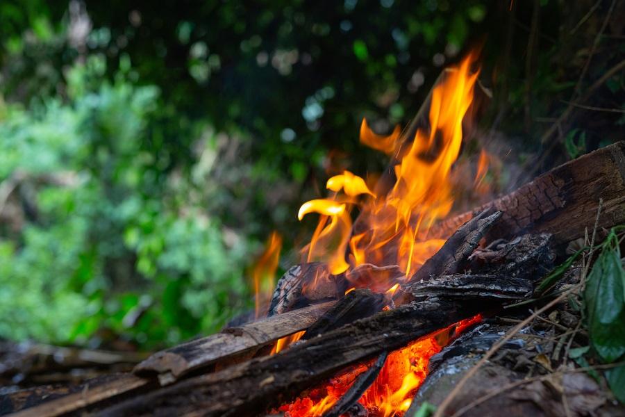 В Тамбовской области 20 июля установится чрезвычайный класс пожароопасности