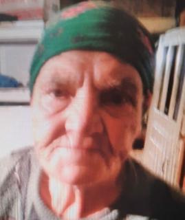 В Тамбовской области без вести пропала 86-летняя пенсионерка