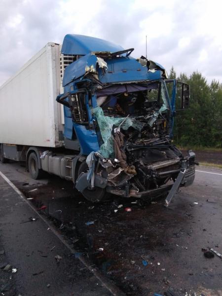В Тамбовской области при столкновении большегрузов пострадал водитель фуры