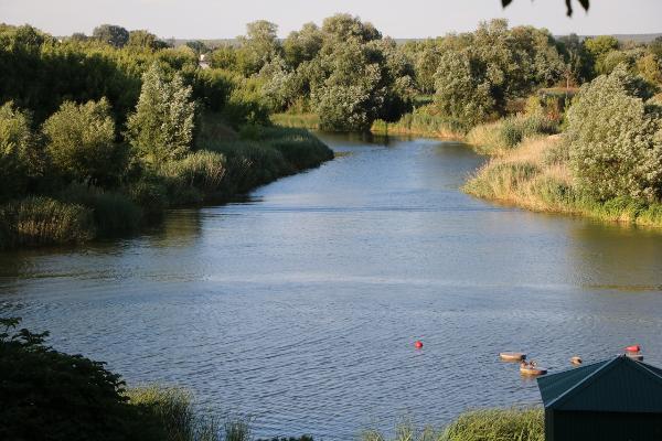 В Тамбовской области за неделю утонуло четверо