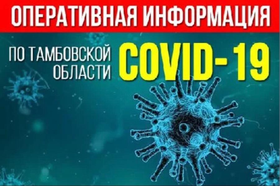 В Тамбовской области за сутки 95 случаев новой коронавирусной инфекции