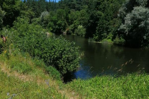 В Уварово на берегу реки подростки нашли тело мужчины