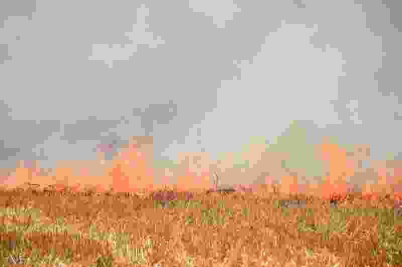 Виновных в пожаре на полях Ржаксинского района накажут