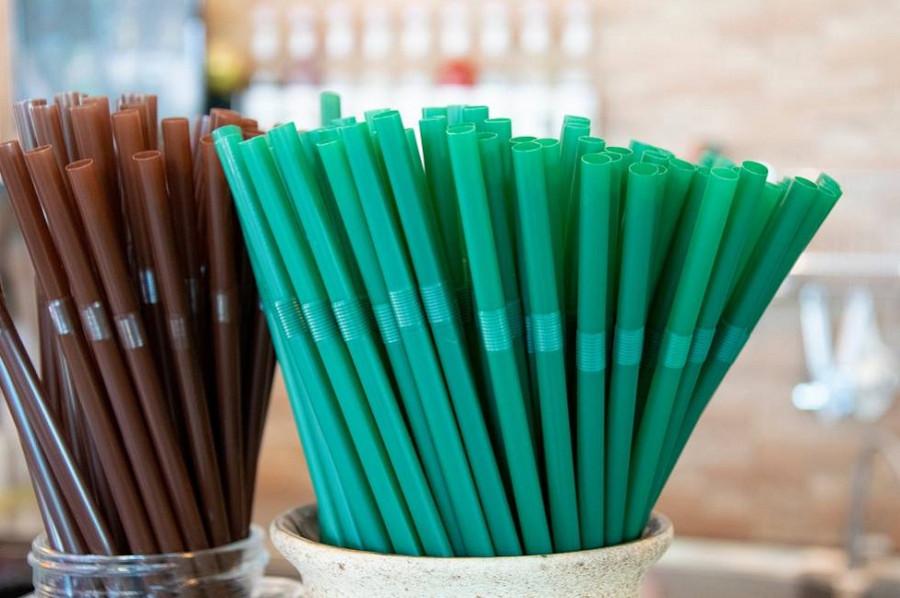 Минприроды предлагает запретить использование 28 одноразовых товаров