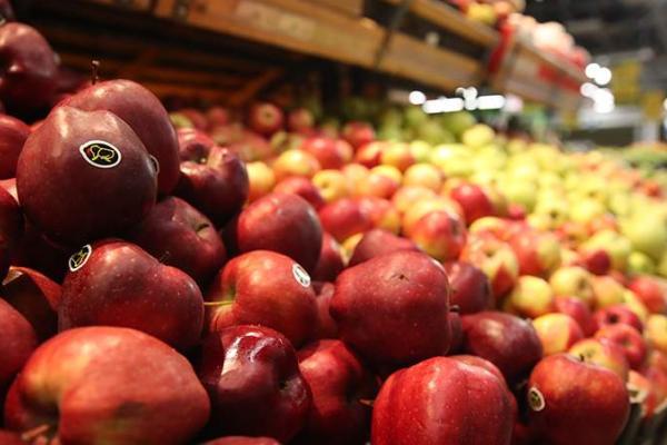 Минпромторг и Минтранс обсуждают возможности снижения цен на перевозку продуктов