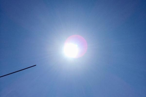 Тамбовчан предупредили о сильной жаре 20 августа