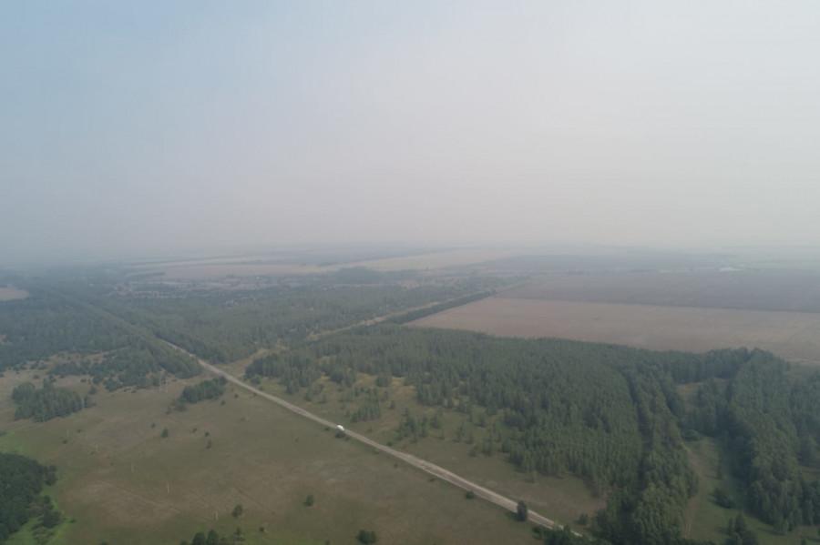 Тамбовскую область окутывает дым от мордовских лесных пожаров