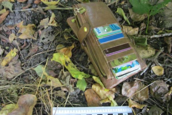 В Мичуринске мужчина напал на прохожую и отобрал у неё кошелёк