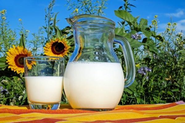 В России изменятся правила ветеринарной экспертизы молока