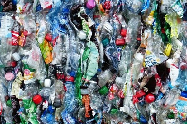 В России призвали к постепенному отказу от пластиковой посуды