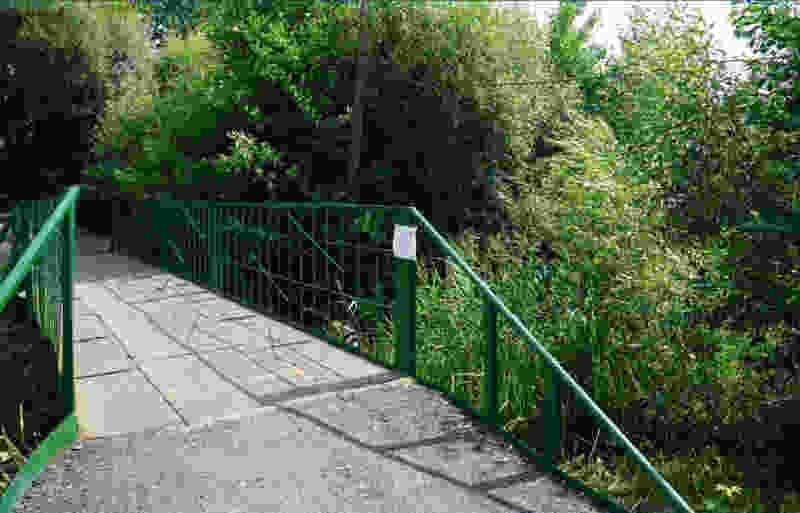 В Тамбове отремонтировали мост в Ахлябиновской роще