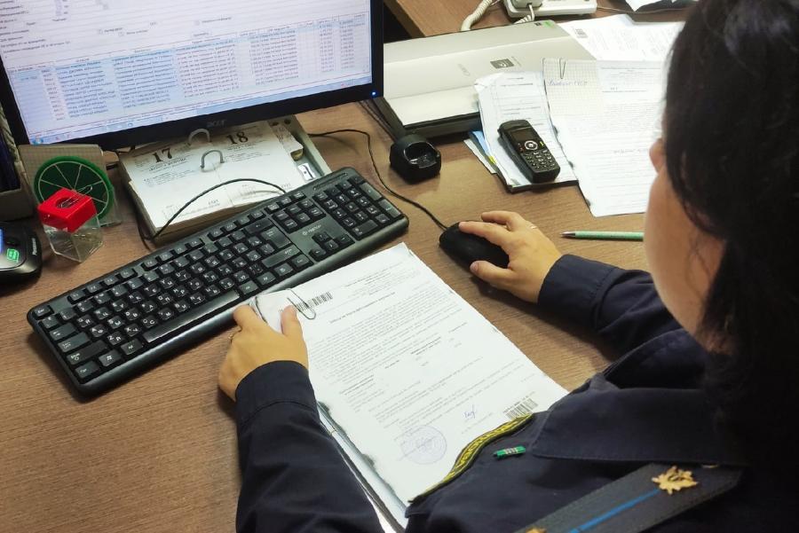 В Тамбовской области наказали предпринимателя, вовремя не оплатившего штраф за перегруз
