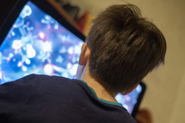 Для защиты детей от мошенничества в интернете нужны общие усилия