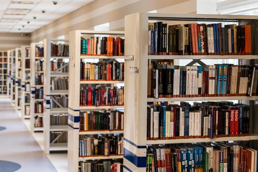 Две библиотеки Тамбовской области получат 15 млн рублей на модернизацию