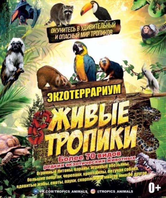 """Экзотариум """"Живые тропики"""", праздник """"Картошкины именины"""", межнациональный фестиваль"""
