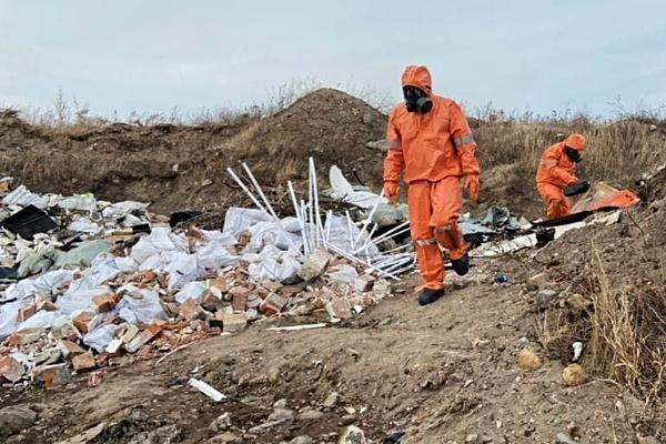 На ферме в Инжавинском районе биологические отходы сбрасывали в бетонную яму