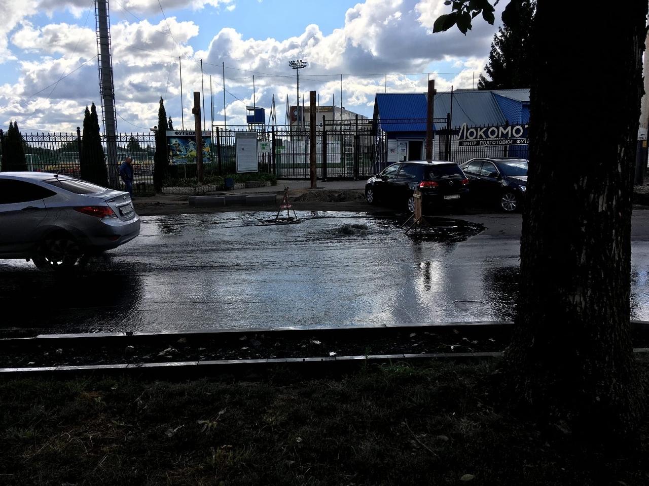 На улице Гастелло вновь прорвало канализацию