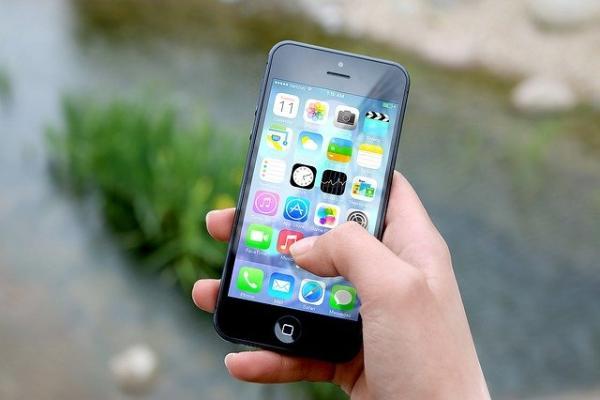 Полицейские задержали тамбовчанина, укравшего у сотрудницы кафе смартфон