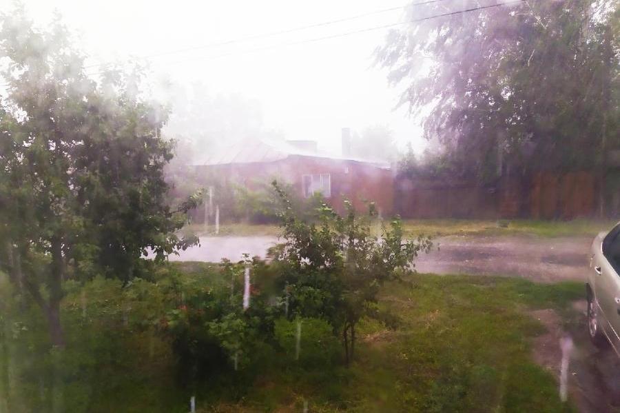 В ближайшие часы в Тамбовской области ожидаются ливни и сильный ветер