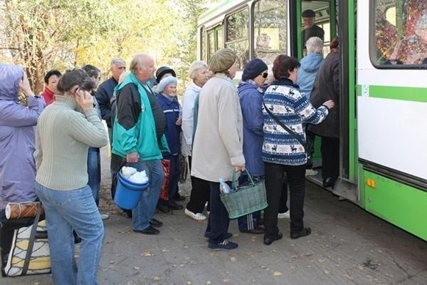 В Тамбове сократили количество рейсов ещё одного дачного маршрута