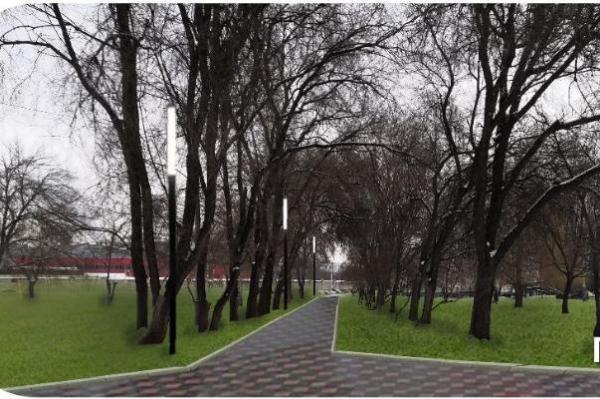 В Тамбове устанавливают опоры освещения и опиливают деревья