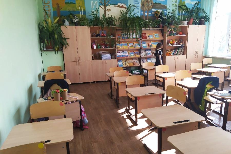 Массового закрытия школ из-за коронавируса не планируется