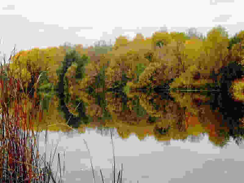 Тамбовчане на выходных смогут в полной мере насладиться осенью