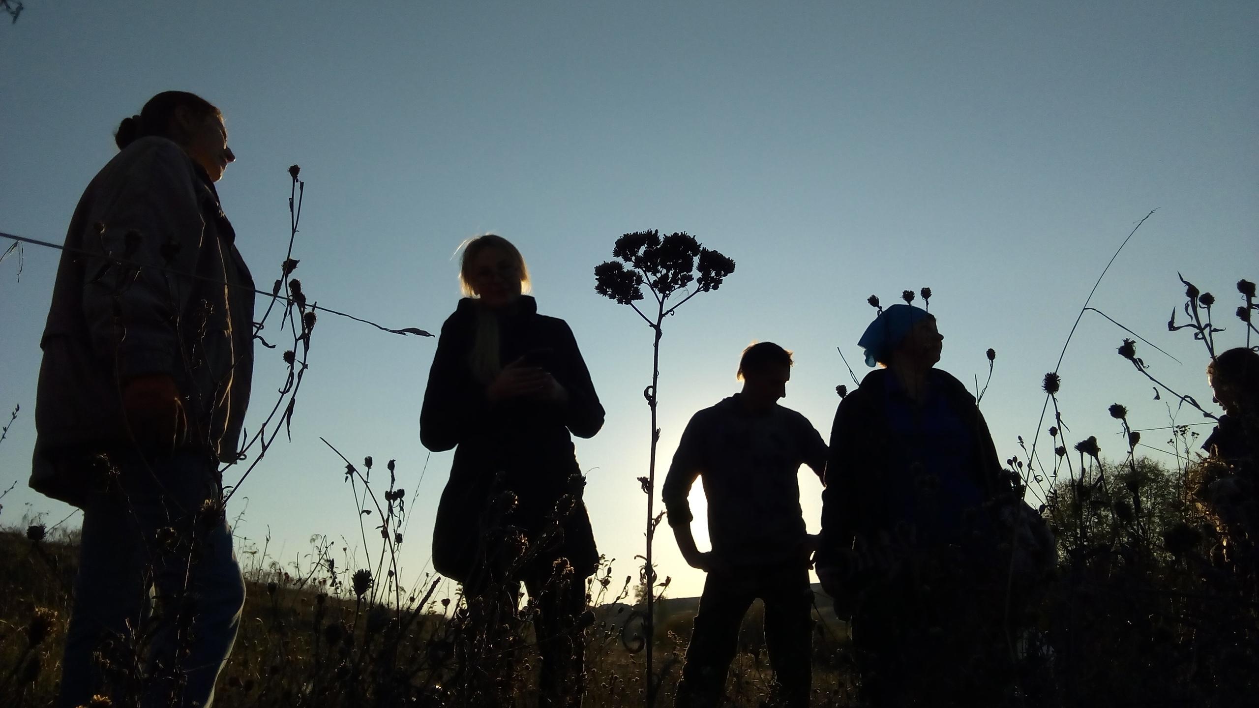 Тамбовские волонтёры возродили «Липовский лес»