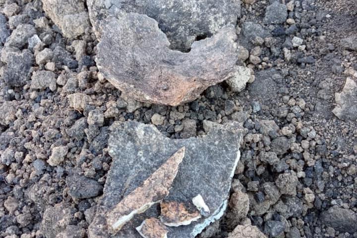 В Петровском районе водопроводчики раскопали захоронение Бронзового века